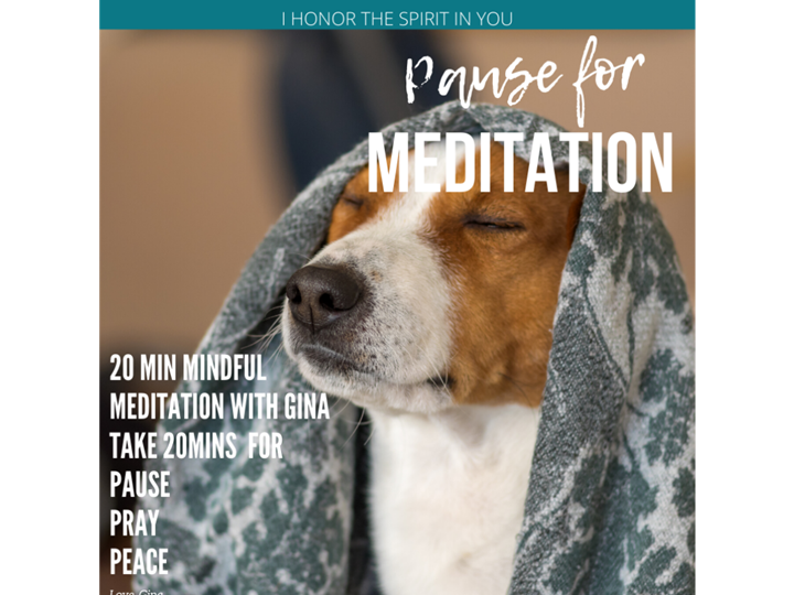 Mindful Meditation and Mid-Day Refresh with Gina